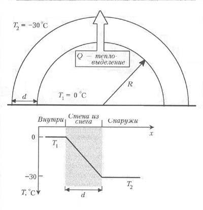 физике человек по таблицы